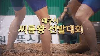 2019대구시씨름왕선발대회 다시보기