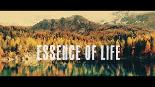 Devi Reed - Essence of Life [Official Music Video 4K]
