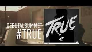 Avicii True ITUNES ad