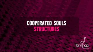 Cooperated Souls - Structures [Flamingo Recordings]