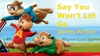 Chipmunk'ed: James Arthur - Say You Won't Let Go