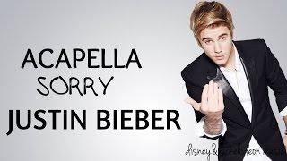 Justin Bieber-Sorry ACAPELLA