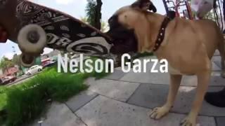 Cartel de Santa SB Nelson Garza