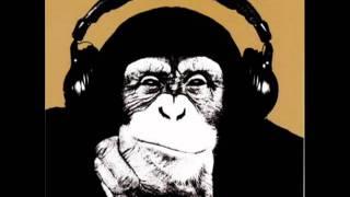 Fara Zahar - Cine mi-a impuscat maimuta