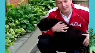 Padre Marcelo Rossi apresenta seus animais de estimação!