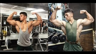 Andrei Deiu  2017 - Aesthetic Bodybuilding And Fitness Motivation