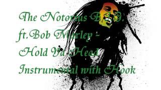 The Notorius B.I.G. ft.Bob Marley - Hold Ya Head Instrumental with Hook