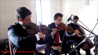 Aleluia Shrek Violino - Música Instrumental de Casamento para Entrada e Benção das Alianças