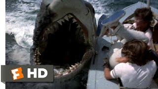 Jaws 2 (7/9) Movie CLIP - Shark vs. Sailboats (1978) HD