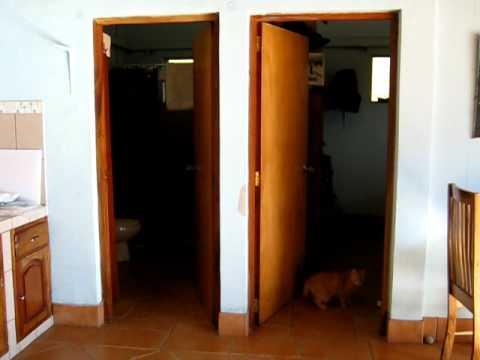 Main Room in Emma's Guest Cottage, Reparto San Juan, Granada, Nicaragua