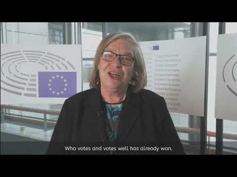 MSD Brown Bag Lunch Talks den 15 maj. Vad kan EU göra för dig och mig?