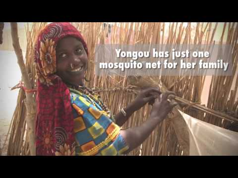 World Malaria Day 2017: malaria prevention in conflict-affected regions of Chad