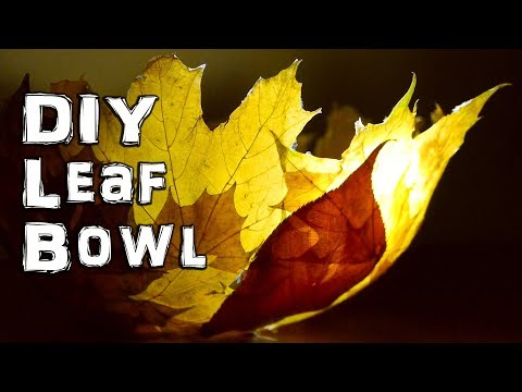 How to Make an Autumn Fall Leaf Bowl
