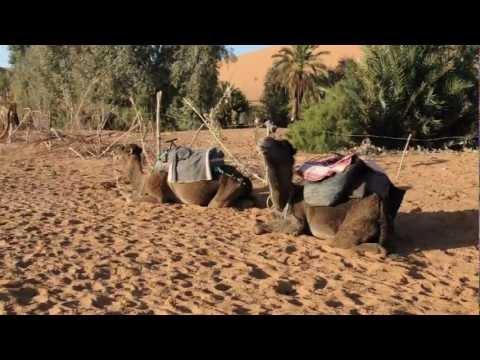 Erg Chebbi Desert (Morocco)