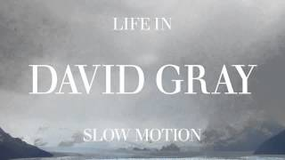 "David Gray - ""From Here You Can Almost See The Sea"""