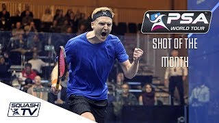 Squash: Shot of the Month Contenders - Jan 2018