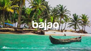 BACK IN SUMMER by Nicolai Heidlas - Bajao Music - No Copyright Music