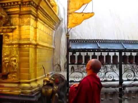 Agitated monkeys at Swayambhu Stupa
