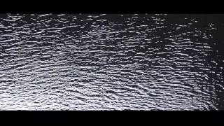 Gemini - What so not- Music video