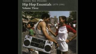 Hip Hop Essentials Vol3 The 900 Number 7(The 45 King)