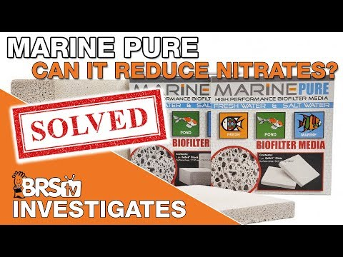 Can Marine Pure really reduce nitrates? We gain some valuable insight... | BRStv Investigates