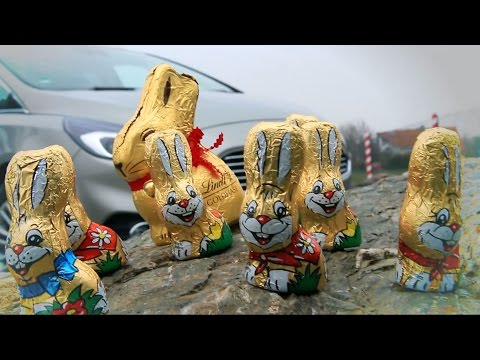 Easter egg hunt – gone in 60 seconds?