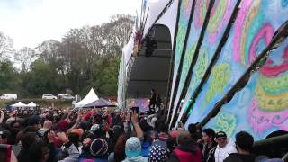 1200 Micrograms Live Equinox Mexico 2016