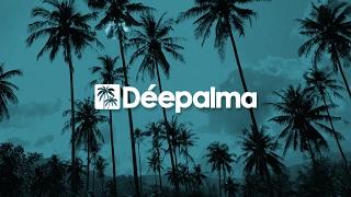 Ben Ashton feat. Philip Manning - Can't Stop (Original Mix) [Déepalma Records]