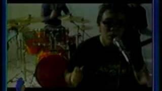 MALDICIÓN,ESTOY LLORANDO CACERIA DE LAGARTOS (CANCIÓN DE PABLO NOBOA) video-clip