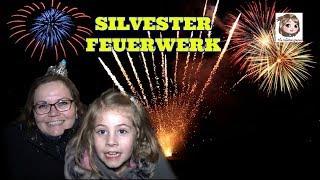 SILVESTER - Wir zeigen euch unser Feuerwerk - und dann geht es etwas schief! PYRO FAIL