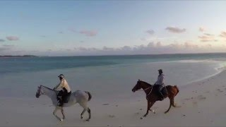 Immersion in LUX* Belle Mare, Mauritius