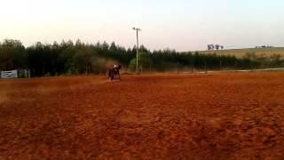 video 2012 09 05 17 37 03