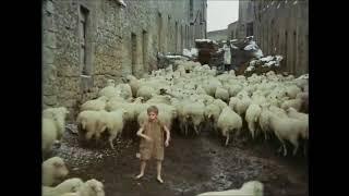 Le Avventure di Pinocchio (Nino Manfredi ed Andrea Balestri), 1972