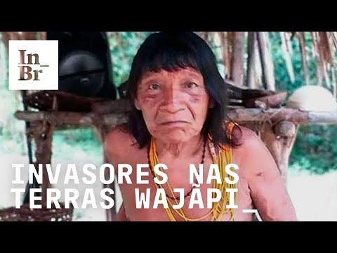 Imagens inéditas: indígenas wajãpi mostram rastros dos invasores