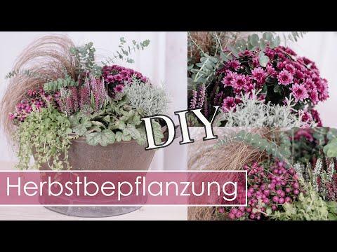 DIY – Herbstdeko | HERBSTBEPFLANZUNG in Bordeaux  & Weiß-Silber | Balkon & Terrasse | TIPPS &TRICKS