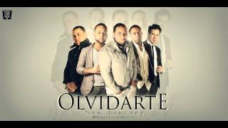 New Journey - Olvidarte (2013)