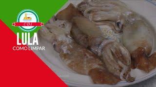 Como limpar lula + dicas de cozimento - Culinaria direto da Italia