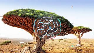 Inova - Desert ( Arabic Trap Music )