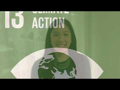 How Swedfund works with Sustainable Development Goal 13 Climate Action