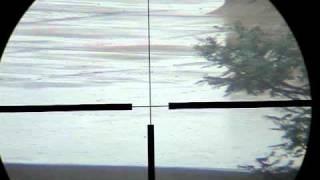 FX Monsoon  5.5 - tiros a 200 metros