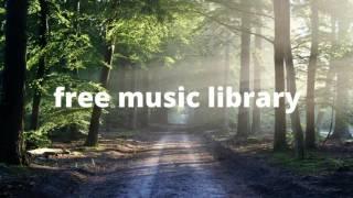 Outcast   THOMAS VX     Copyright Free Music