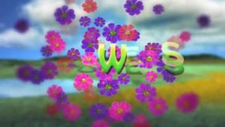 FLOWERS INTRO 2