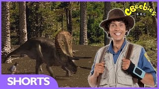 Andy's Dinosaur Adventures - Triceratops Facts - CBeebies