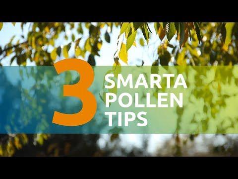3 smarta pollentips
