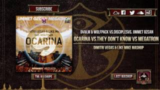 Ocarina vs They Don't Know vs Megatron (DV&LM Mashup)(Tomorrowland 2016)