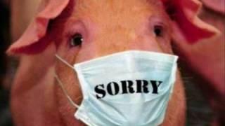 שפעת חזירים קורע