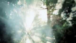 Stevie Nicks Birthday Tribute Video