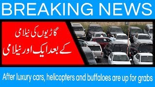 After luxury cars, helicopters and buffaloes are up for grabs | 11 Sep 2018 | 92NewsHD