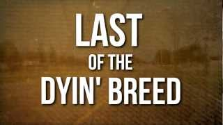 Lynyrd Skynyrd // Last of a Dyin' Breed (OFFICIAL LYRIC VIDEO)
