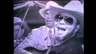 Hank Williams Jr - Tear In My Beer (Official Music Video)